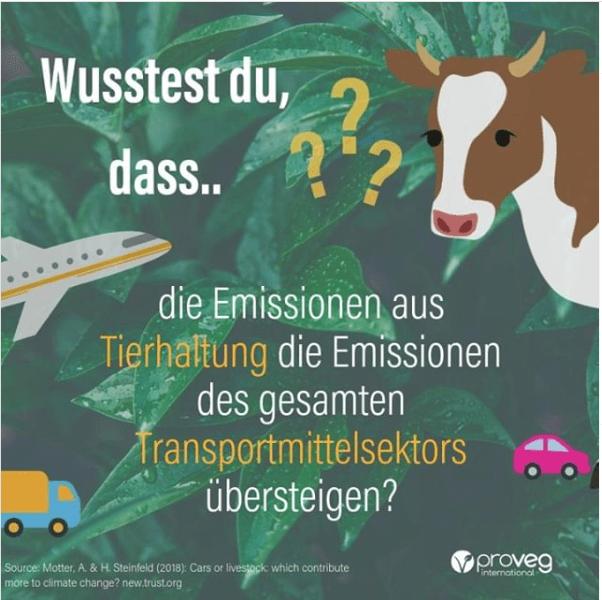 Pro Veg über die Emission der Tierhaltung